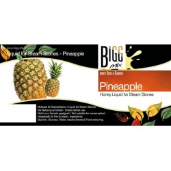 Bigg Mix Molasse Ananas 100 ml